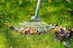lawn care lawrence